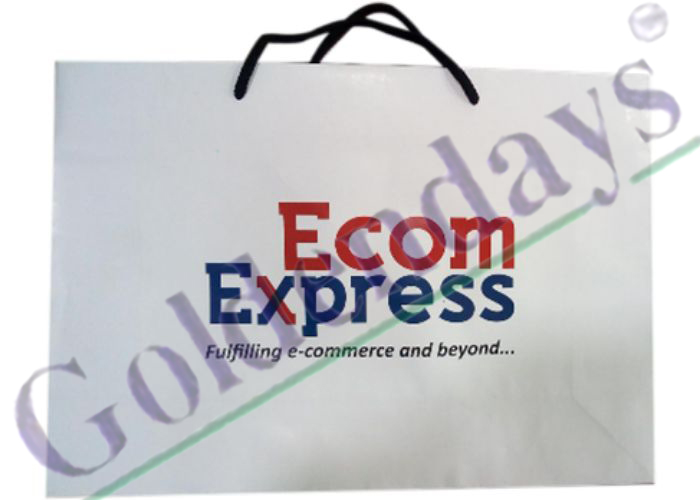 Ecom Express carry bag