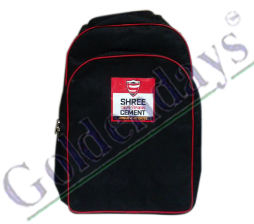 Shree Cement Bag 2