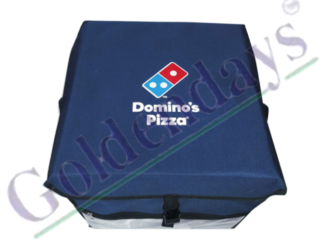 Domino's Food Delivery Bag